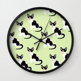 Cornish Rex Kitten Green Wall Clock
