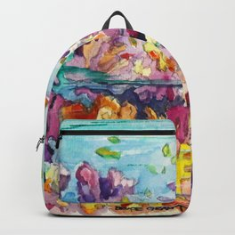 Biscayne National Park Backpack