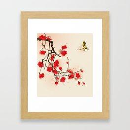 Oriental plum blossom in spring 011 Framed Art Print