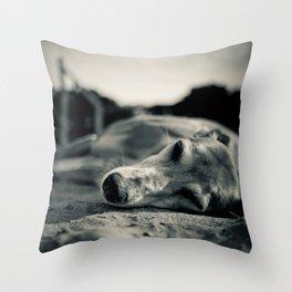 Takin' 5 Throw Pillow