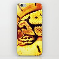 monty python iPhone & iPod Skins featuring Lemon Python by LeeAnnPoling