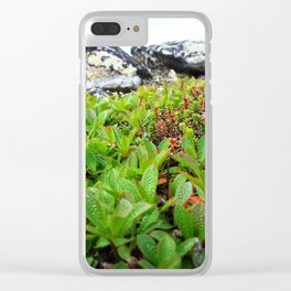 Up on the mountain Clear iPhone Case