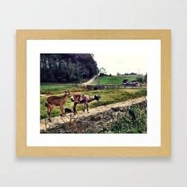 Dirt Road Framed Art Print