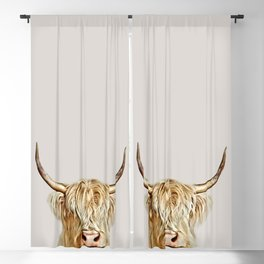 Albino Highland Cow Blackout Curtain