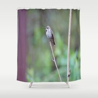 hummingbird Shower Curtains featuring Hummingbird by Ricarda Balistreri
