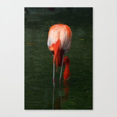 Shrimping Canvas Print