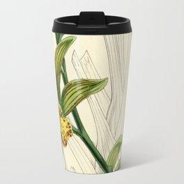 Cymbidium iridioides Travel Mug
