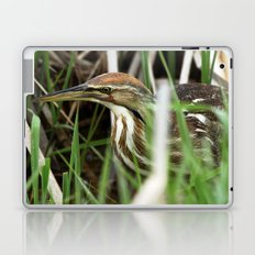 American Bittern - Take One Laptop & iPad Skin