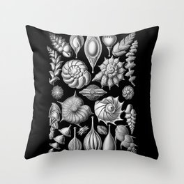 Sea Shells (Thalamophora) by Ernst Haeckel Throw Pillow