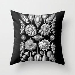 Sea Shells (Thalamophora) by Ernst Haeckel Throw Pillow