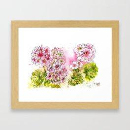 Pink Geraniums Watercolor Painting Framed Art Print