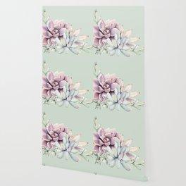 Beautiful Mint Succulents Wallpaper