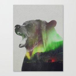 Bear In The Aurora Borealis Canvas Print