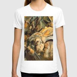 Splitting Hares T-shirt