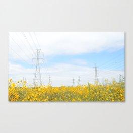 field of dreams 2 Canvas Print