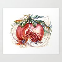 pomegranate Art Prints featuring Pomegranate by Irina Vinnik