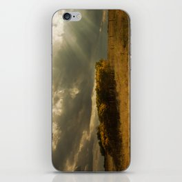 Sunset on China Berry Trees iPhone Skin