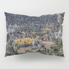 Gold in the Valley Pillow Sham