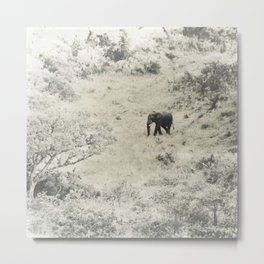 africa is a feeling - elephant Metal Print