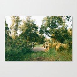 Holme Woods 2 Canvas Print