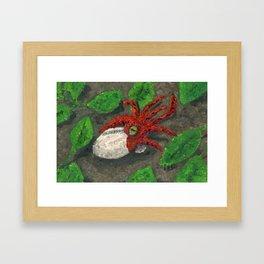 The Hatchling Framed Art Print