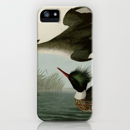 401 Red breasted Merganser iPhone Case