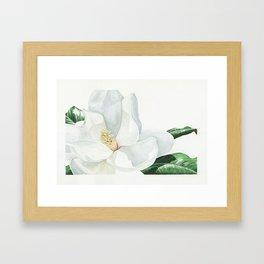 Watercolor Magnolia Blossom Framed Art Print