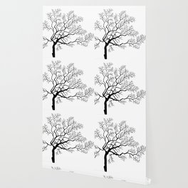 Beautiful branching tree graphics Wallpaper