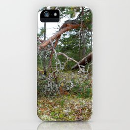 100 KM To Lapand iPhone Case