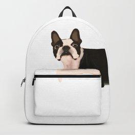 Boston terrier Backpack