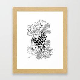Succulents & Honeycomb Framed Art Print