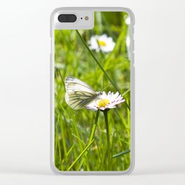 WHITE BUTTERFLY on COMMON DAISY Clear iPhone Case
