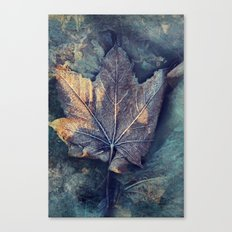 Frost Leave Canvas Print