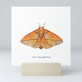Spiny Oakworm Moth (Anisota stigma) Mini Art Print