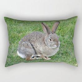 Cottontail Rabbit Rectangular Pillow