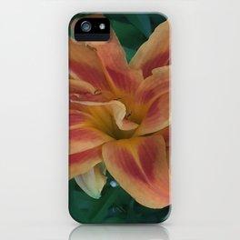Botanical Florals Zencolor1 iPhone Case