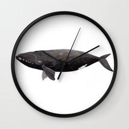 Northern right whale (Eubalaena glacialis) Wall Clock
