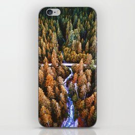 forest aerial view in yosemite iPhone Skin