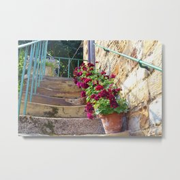 Worn steps and flowerpots Metal Print