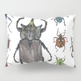 Insect collection (color) Pillow Sham