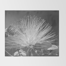 Calliandra Flower Throw Blanket