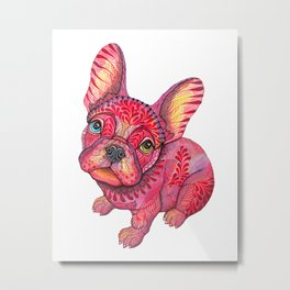 Raspberry frenchie Metal Print