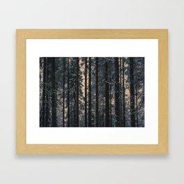 Consenescere Framed Art Print