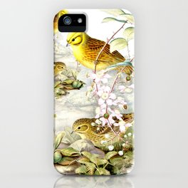 Yellowhammer iPhone Case