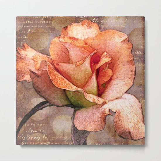 Rose on Grey Metal Print