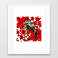 zebra Framed Art Prints featuring Zebra by Saundra Myles