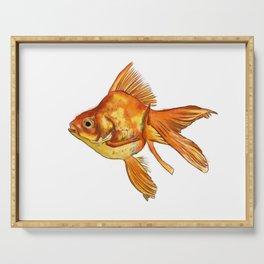 Gold Fish Painting Wall Art Serving Tray