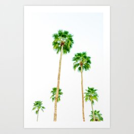 palm trees in palms springs 2 Art Print