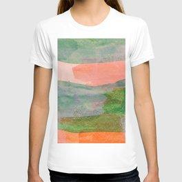 Abstract No. 506 T-shirt