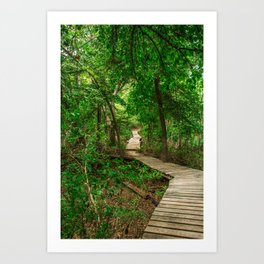 Choose Your Path Art Print